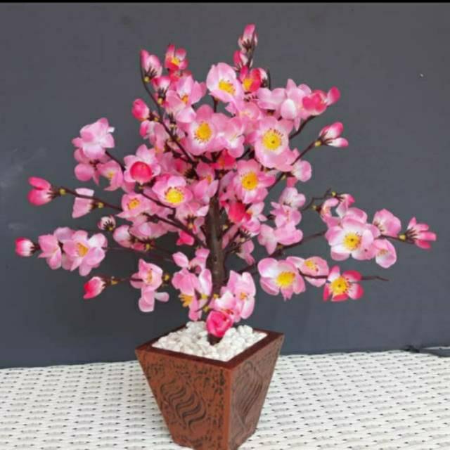 Bunga Hias Plastik Sakura Bunga Sakura Sakura Murah Shopee Indonesia