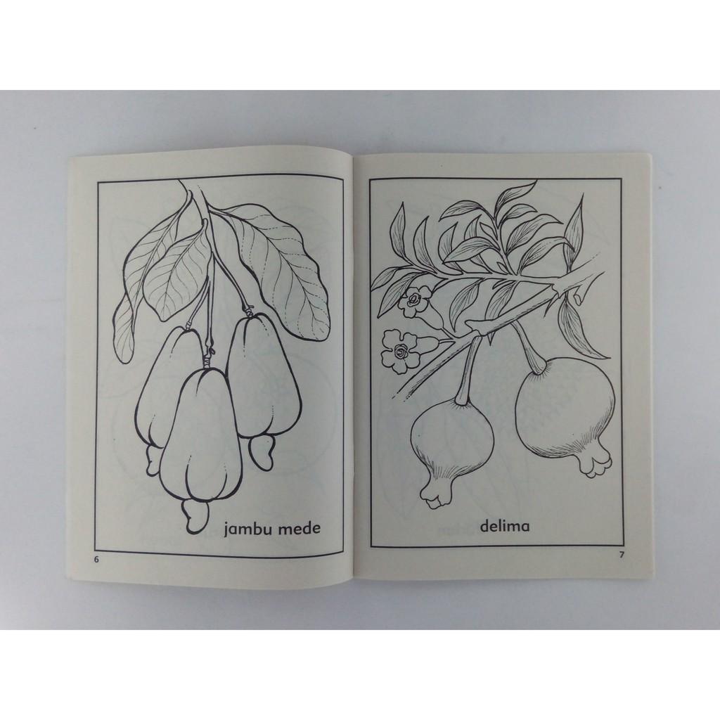 Buku Mewarnai Dan Mengenal Buah Buahan Sayuran Dan Hewan