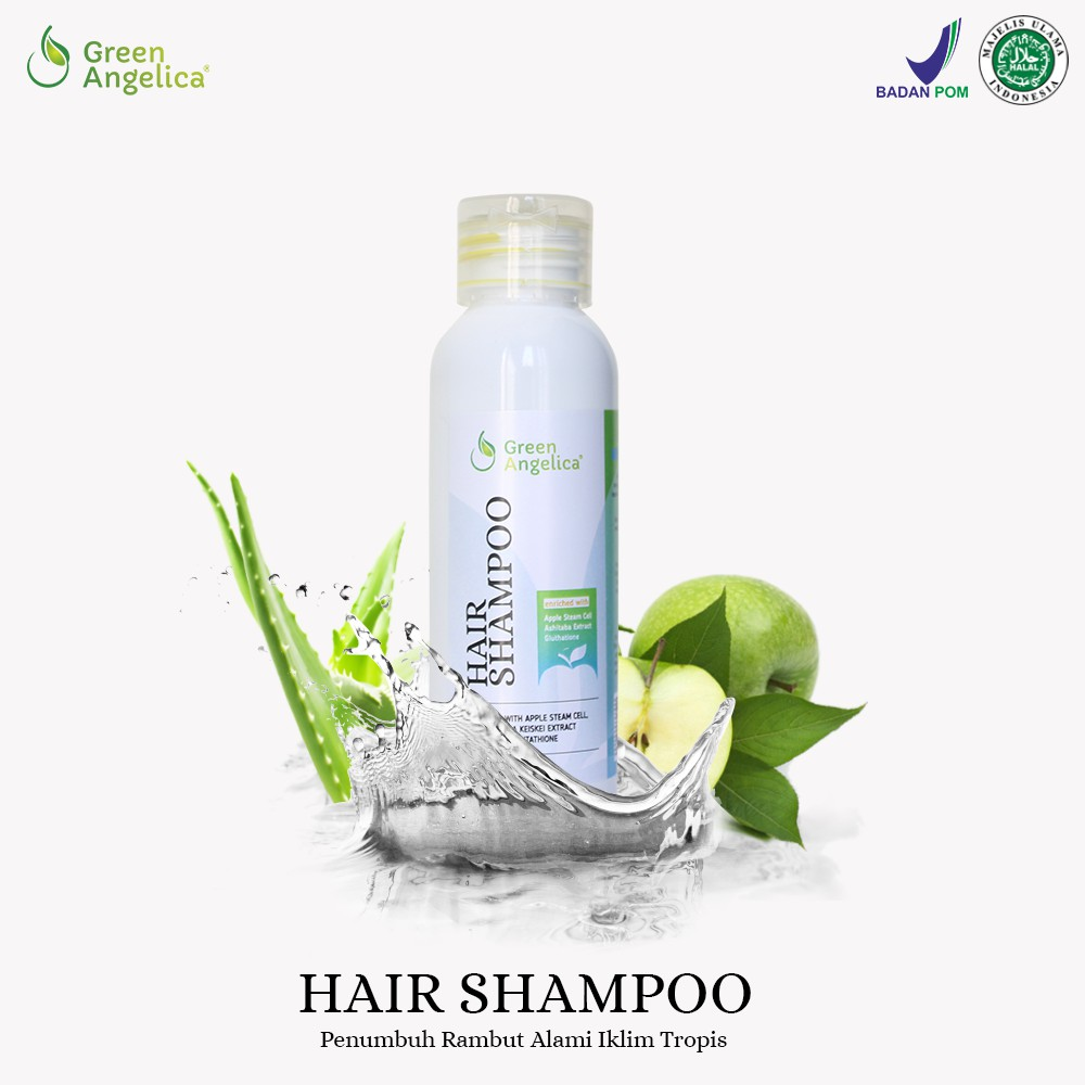 Shampoo Herbal Penebal dan Penumbuh Rambut Rontok Cepat & Anti Ketombe Alami Green Angelica Shampo | Shopee Indonesia