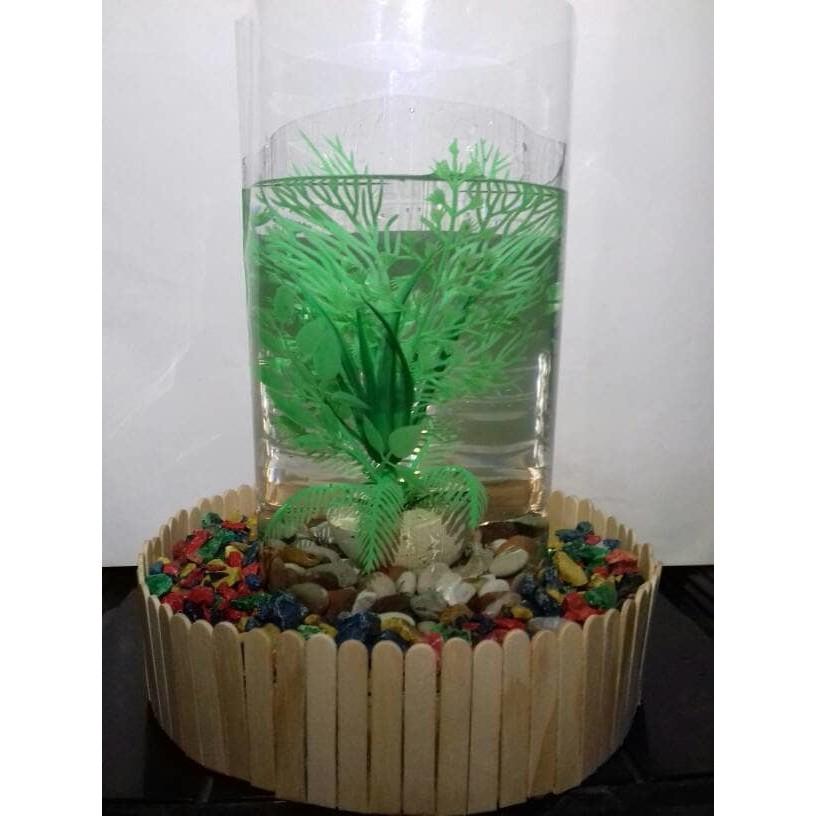 Aquarium Mini Hiasan Meja Ikan Cupang Guppy Moly Platy Shopee Indonesia