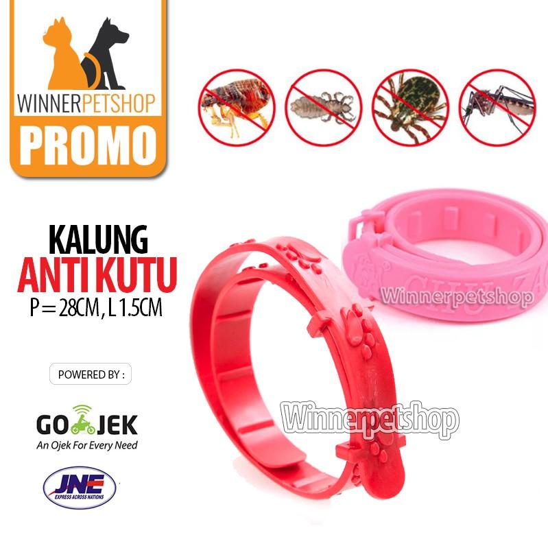 Kalung Kutu Kucing Anjing / Kalung anti kutu / Collar anti kutu /kalung kucing anti kutu/Collar Flea