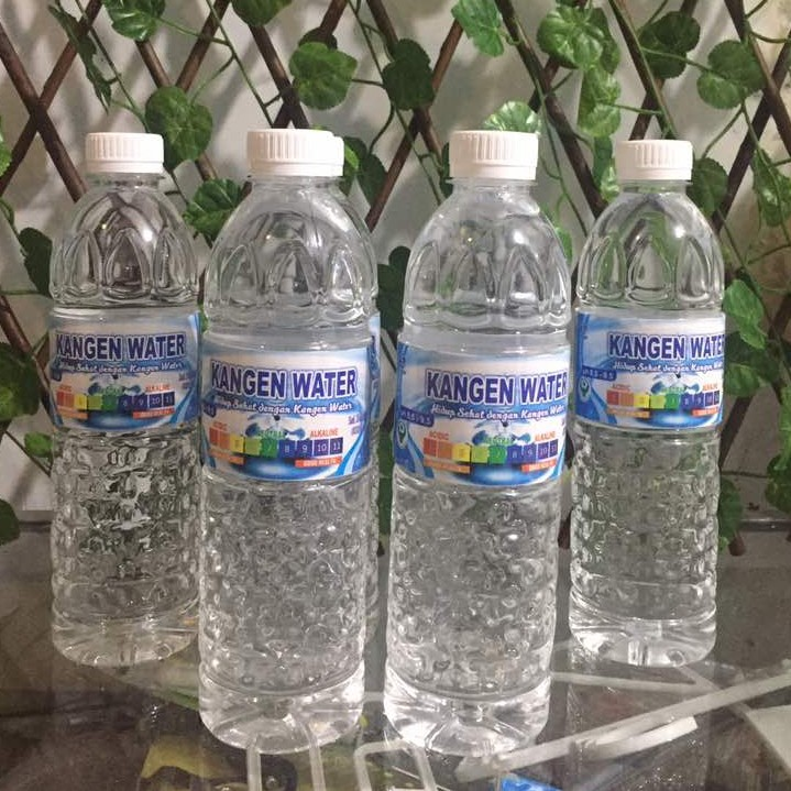 Kangen Water 600 Ml Per Botol Terapi Air Minum Kesehatan Terapi Air Hidrogen Shopee Indonesia
