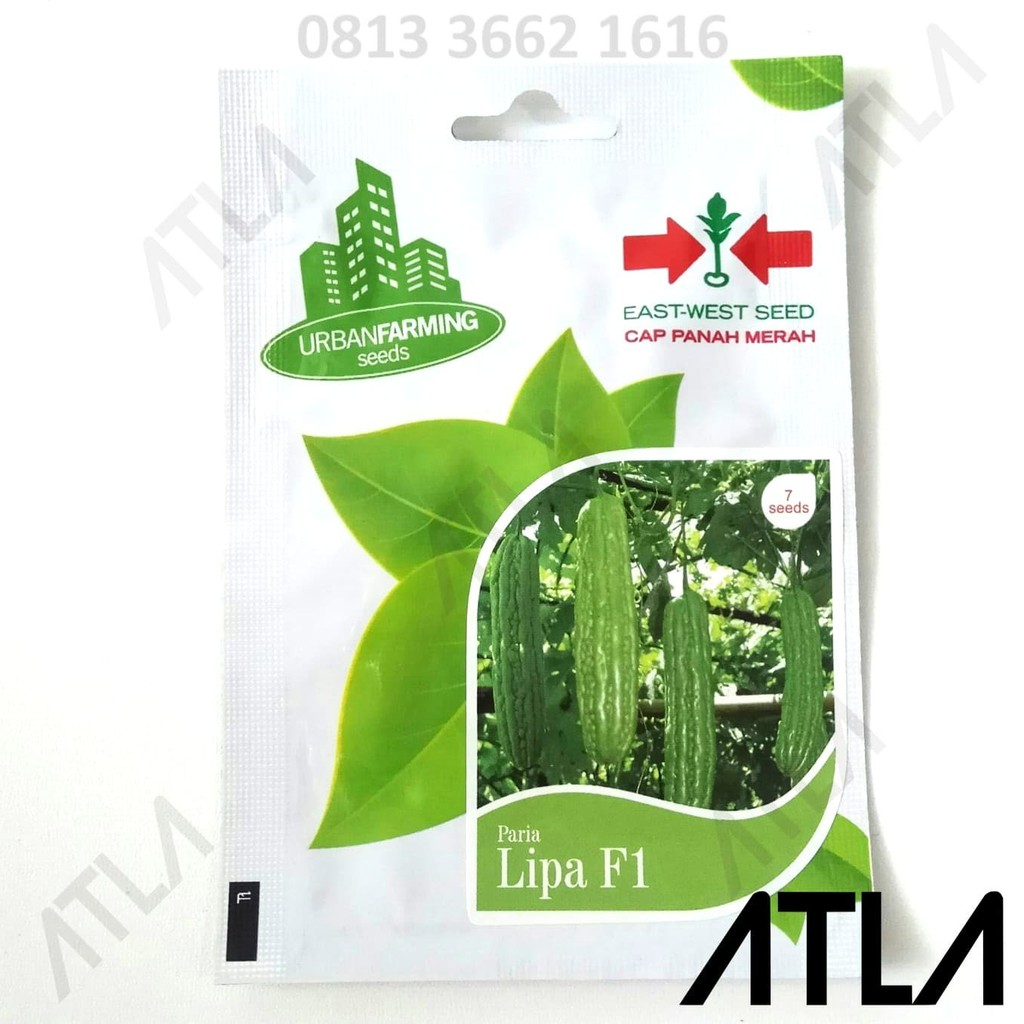 7 BENIH OKRA MERAH F1 bibit tanaman pertanian sayur sayuran herb / herbal | Shopee Indonesia