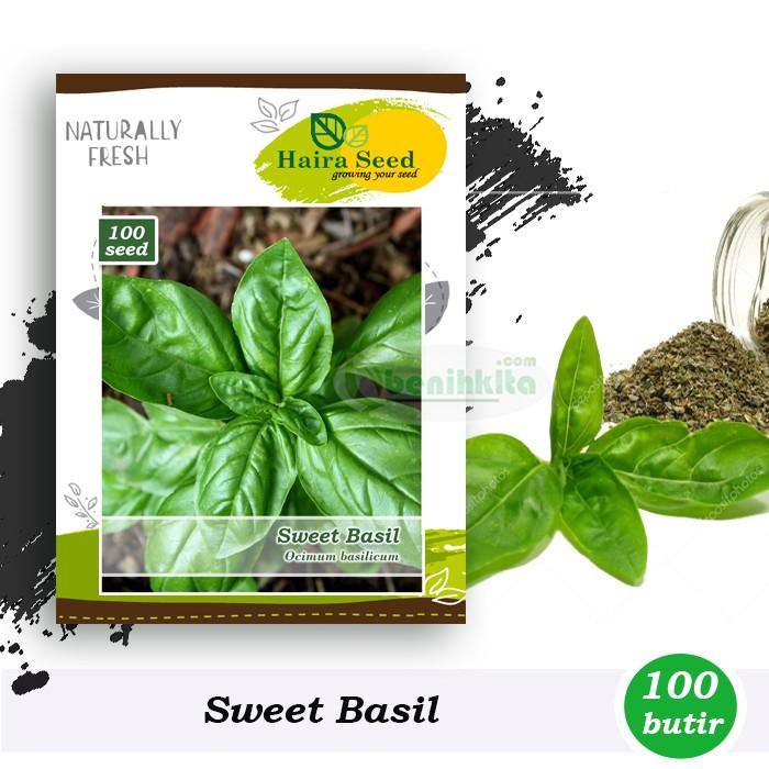 1 Pack 300 Benih Herbal Basil Thai Mr. Fothergills Bibit Tanaman OBAT / sayuran HERB   Shopee Indonesia