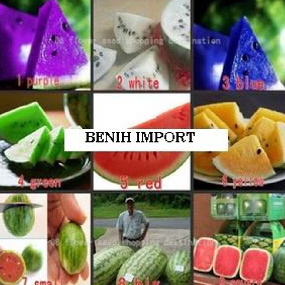 Biji Benih Watermelon Mix 5 Shape Atau Semangka 5 Bentuk Bebas Pilih Isi 30 Butir Terbaik!!!   Shopee Indonesia