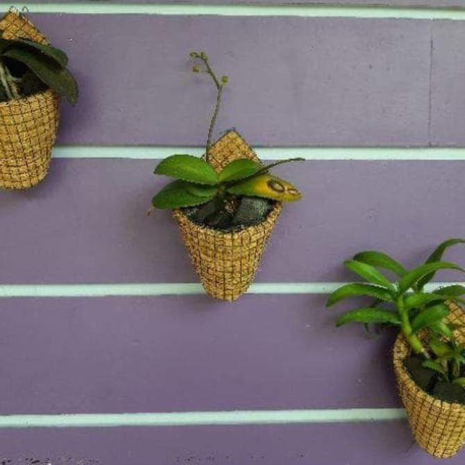 Pot Anggrek Bunga Gantung Bonsai Pot Sabut Serabut Kelapa G