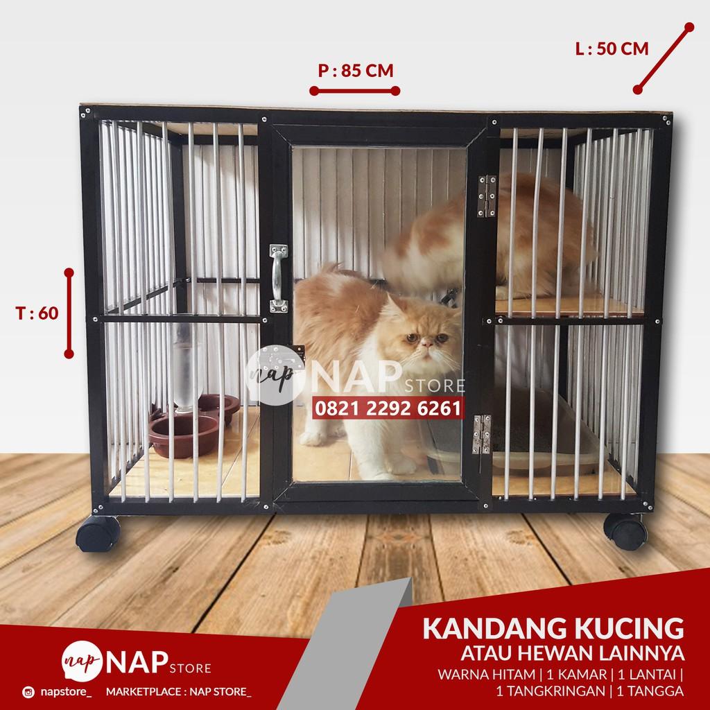 Denahose Model Denah Rumah Kucing Outdoor
