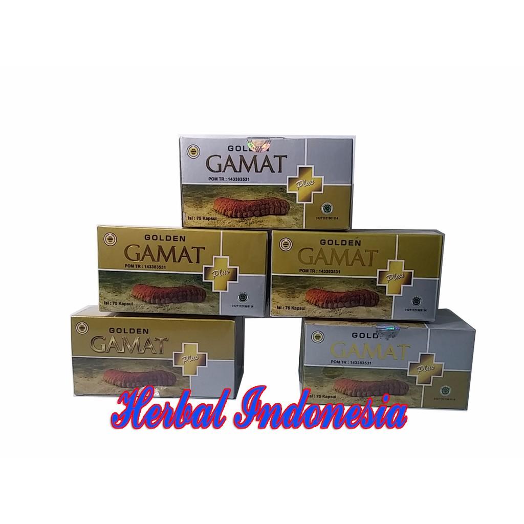Gold Z Oil 60 Kapsul Minyak Gamat Emas Izin Pom Tr Jogja Natural Ekstrak Golden Isi 75 Obat Osteoporosis Shopee Indonesia