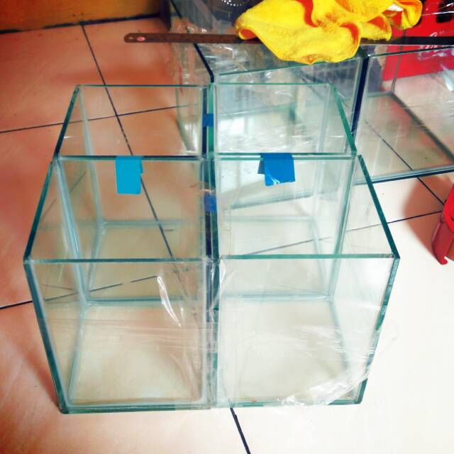 Aquarium Soliter Kaca Ikan Cupang Hias Akuarium 15x15x20 Shopee Indonesia