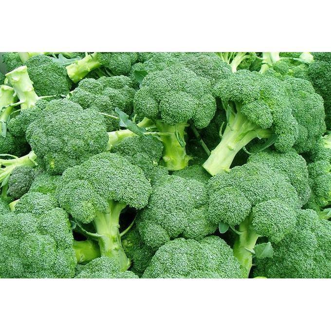 Produk Termurah Benih Brokoli Biji Bibit Tanaman Sayur Sayuran Hidroponik Refill Barang Terjamin Shopee Indonesia