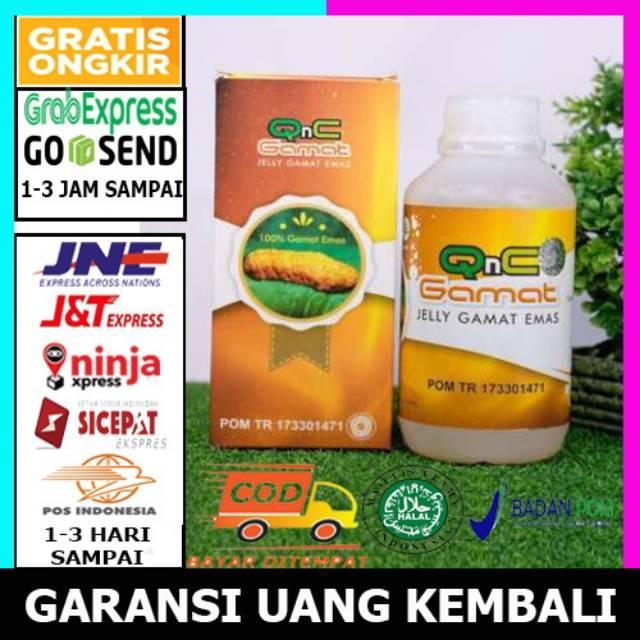 Review Qnc Jelly Gamat Untuk Bopeng