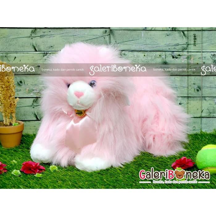 Boneka Kucing Anggora Pink ( Hk - 201055 )