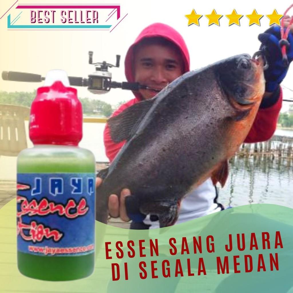 Essen Umpan Ikan Bawal Segala Medan Terbaru 2018 Shopee Indonesia