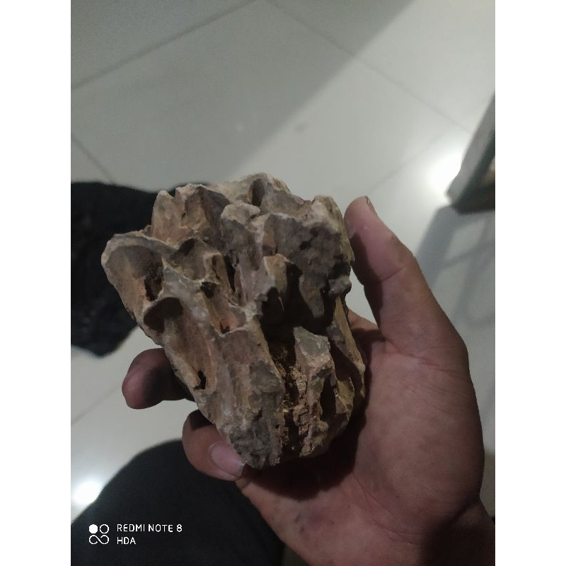Batu Dragon Stone Aquascape 1 2 Shopee Indonesia