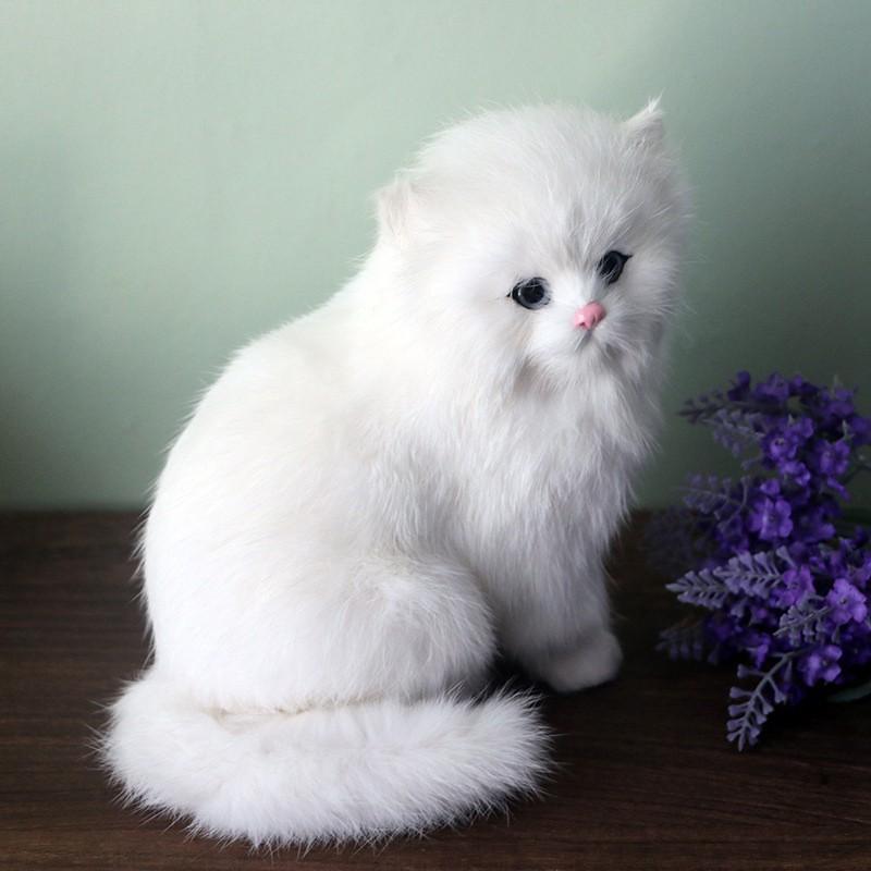 Boneka Plush Bentuk Kucing Persia Warna Putih Shopee Indonesia