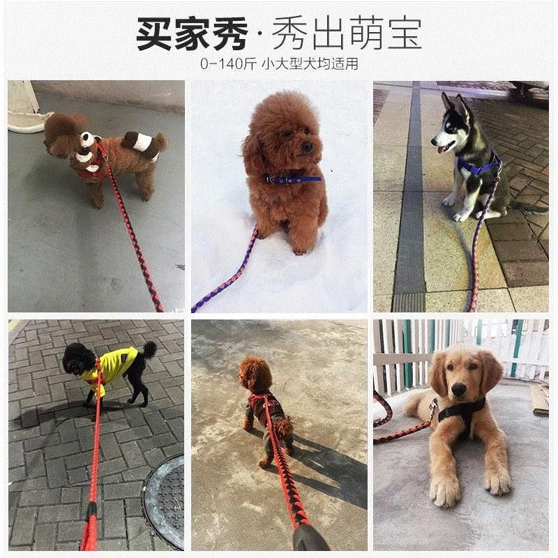 Anjing Dada Strap Besar Anjing Labrador Golden Retriever Menengah Berukuran Rantai Anjing Leashing R Shopee Indonesia