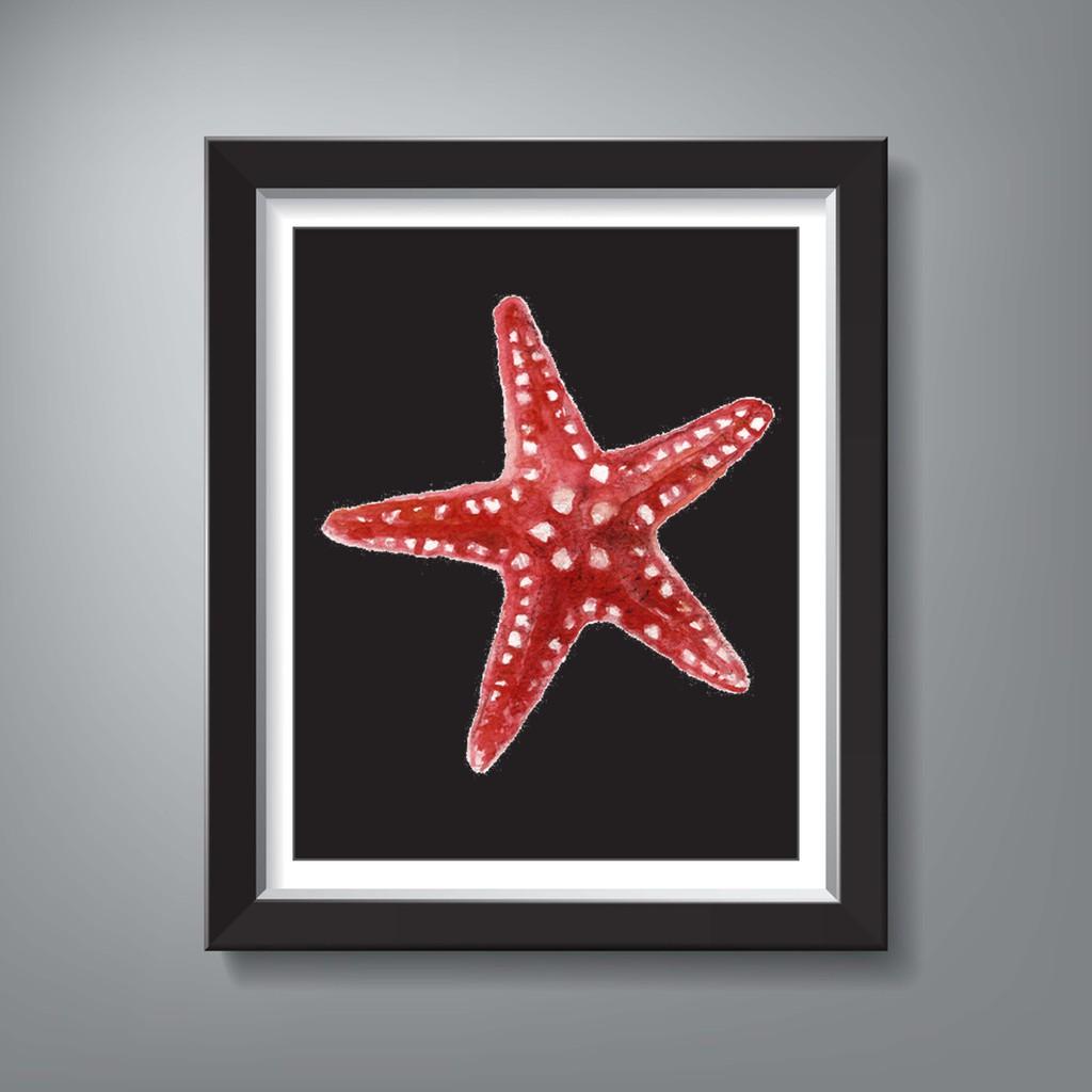 Starfish Illustration Walldecor Sketsa Binatang Bawah Samudera