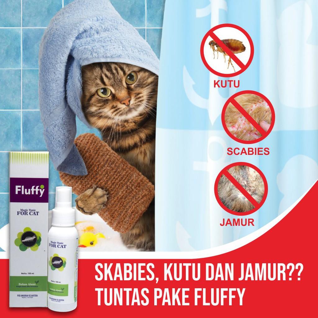 Fluffy Cat Obat Kutu Kucing Basmi Kutu Jamur Ringworm Bulu Jadi Lebat Penyubur Bulu Kucing 30 Ml Shopee Indonesia