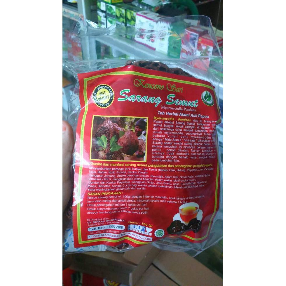 Healty401 Obat Herbal Jantung Batu Ginjal Maag Ambeien Sarang Semut Original 9 Ori Afrika Papua Shopee Indonesia