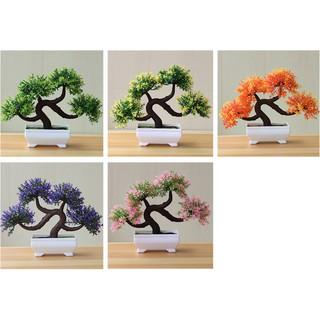 ornamen pot bonsai tanaman bunga bonsai dekorasi rumah