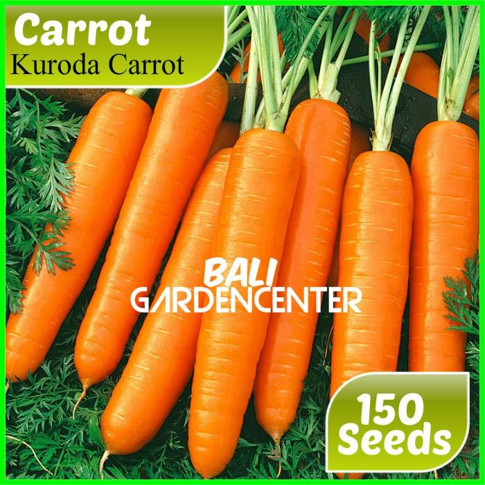 Isi 150 Benih Biji Sayur Wortel Carrot Import Shopee Indonesia