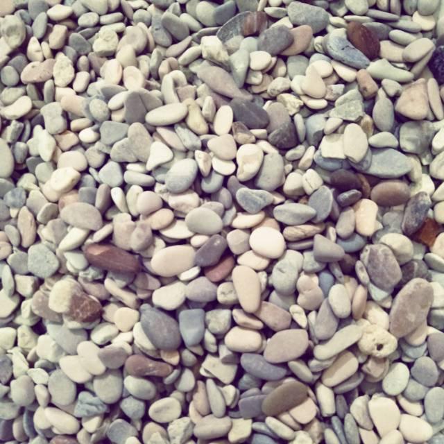 Batu Coral Hias / Batu koral hias bunga / batu koral hias ...