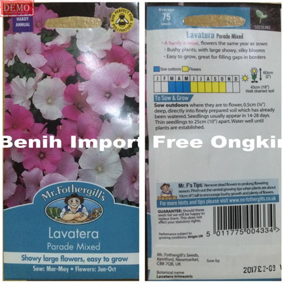 pack 250 benih Bunga Aster Duchess Mixed F1 Mr. Fothergills Bibit tanaman | Shopee Indonesia