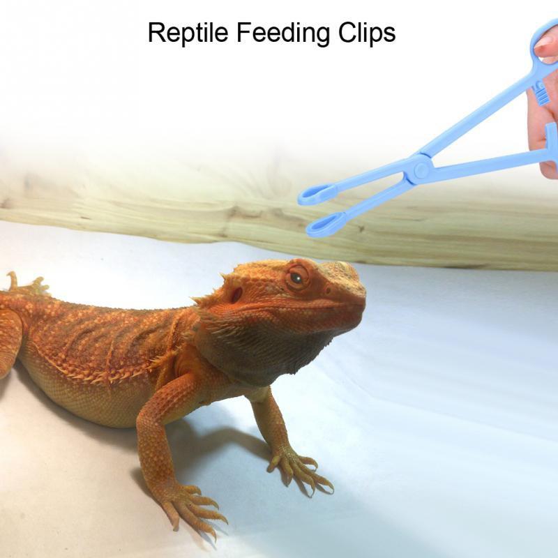 Tong Jepit Alat Pemberi Makanan Untuk Hewan Peliharaan Reptil