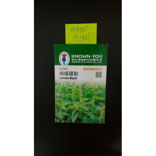 Benih / BIbit Herbal Kemangi LEMON BASIL 200 Butir ( Home Garden ) | Shopee Indonesia