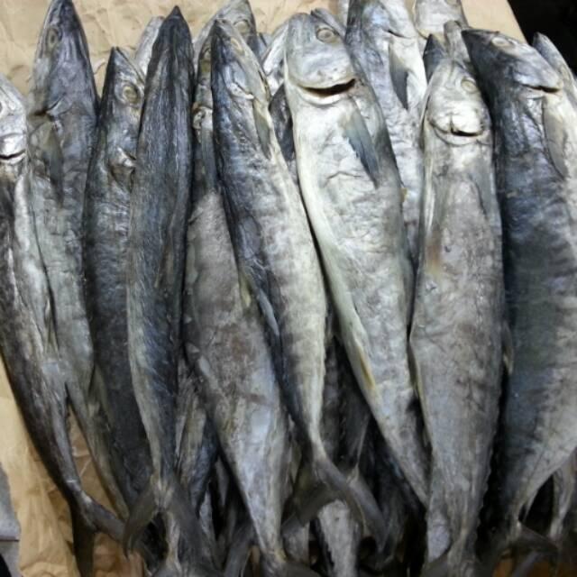 Download 1000+ Gambar Ikan Asin Kepala Batu Terpopuler