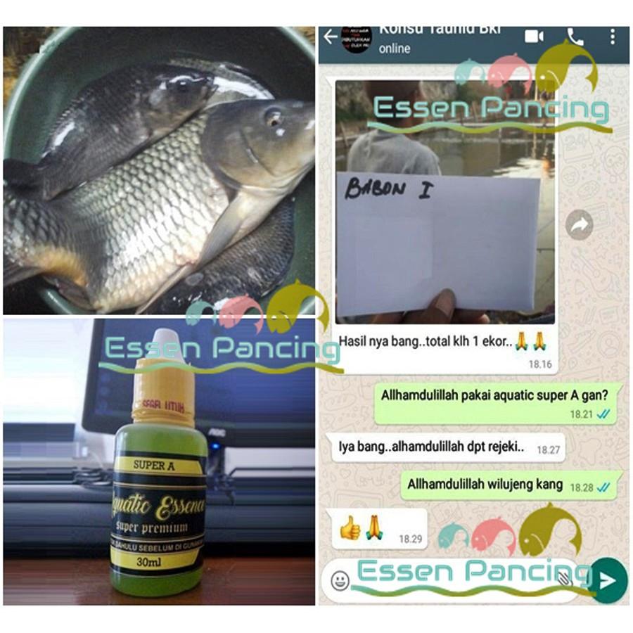 Unduh 8700 Download Gambar Ikan Bawal Terpopuler Gambar Ikan