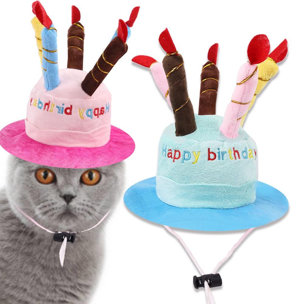 Topi Model Kue Ulang Tahun Lucu Untuk Anjingkucing