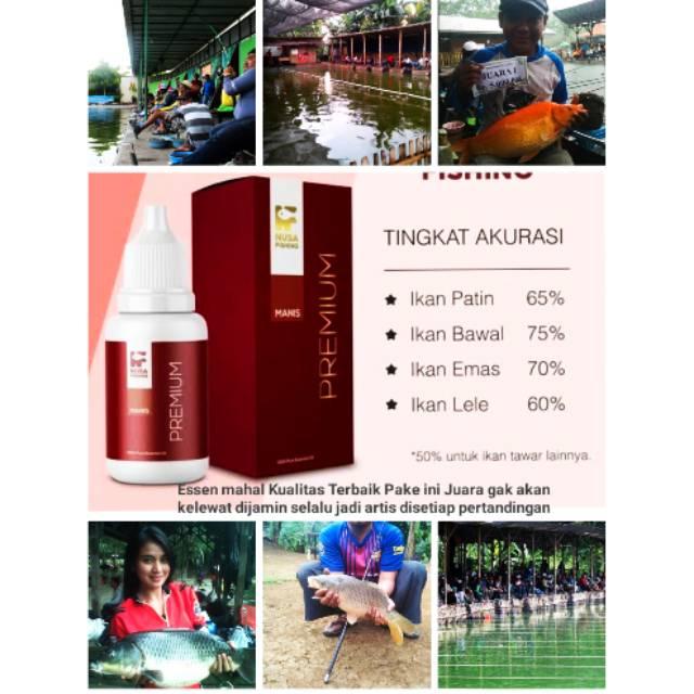 Promo Termahal Essen Premium Original Spesialis Juara 1 Racikan Ramuan Buat Umpan Pancing Mancing Shopee Indonesia