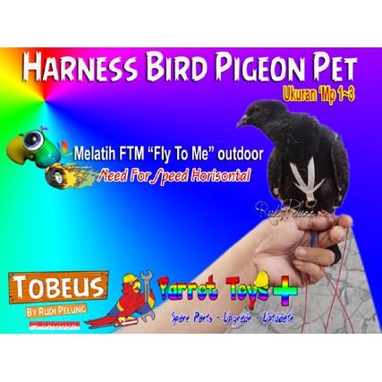 Harness M Parrot Jenis Sun Conure Nuri Lory Ringneck Betet Shopee Indonesia