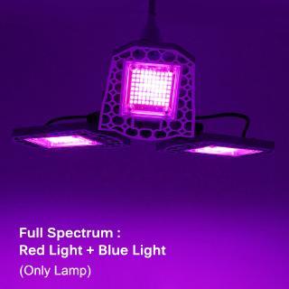 Led Grow Lamp E27 Sunlight Full Spectrum Phytolamp For Plants Waterproof Led Grow Light Shopee Indonesia