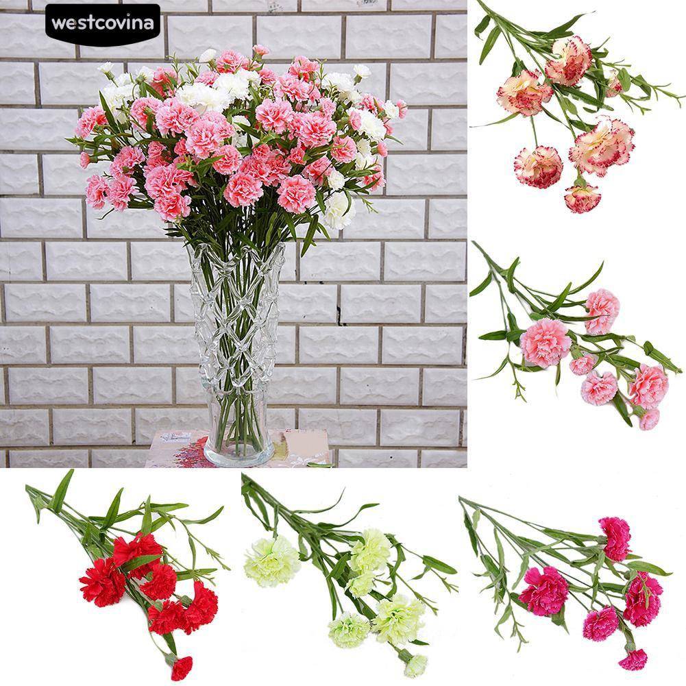 Download Contoh Gambar Bunga Anyelir - Vina Gambar