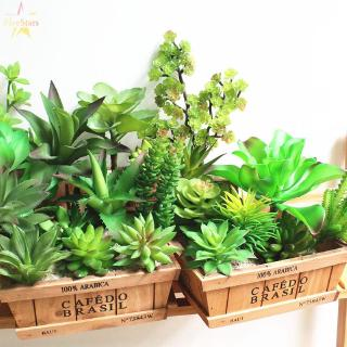Tanaman Kaktus Mini Model Imitasi Bahan Plastik Ukuran 6 10cm