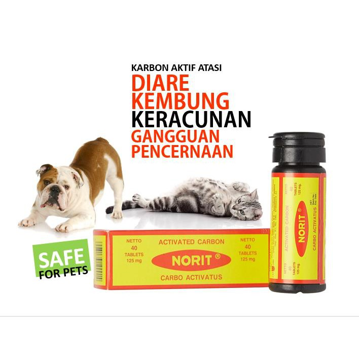 Norit Obat Aman Untuk Anjing Kucing Atasi Keracunan Dan Diare Shopee Indonesia