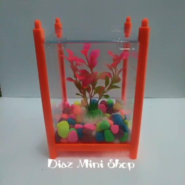 Paket Aquarium Mini Ikan Hias Cupang Shopee Indonesia