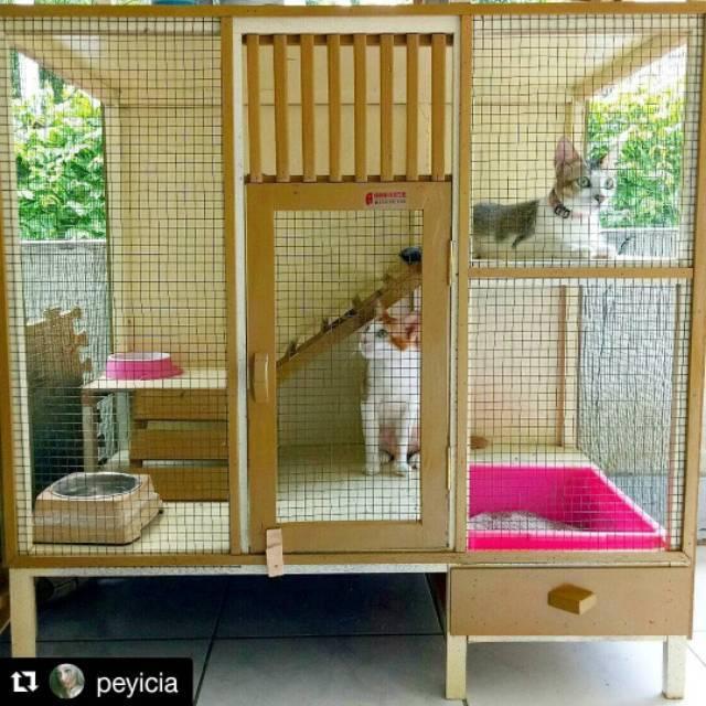 Kandang Kucing Kayu Tingkat Sho