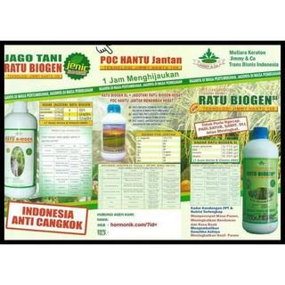Harga preferensial Kualitas Terjamin Pupuk Organik Jimmy Hantu Zpt Ratu Biogen 250 Ml buy now - only Rp66.576