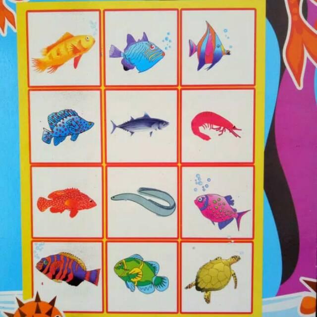Buku Mewarnai Ikan Dan Belajar Menulis Shopee Indonesia