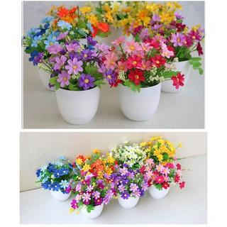 elber pot tanaman bunga dekorasi rumah tanaman hias