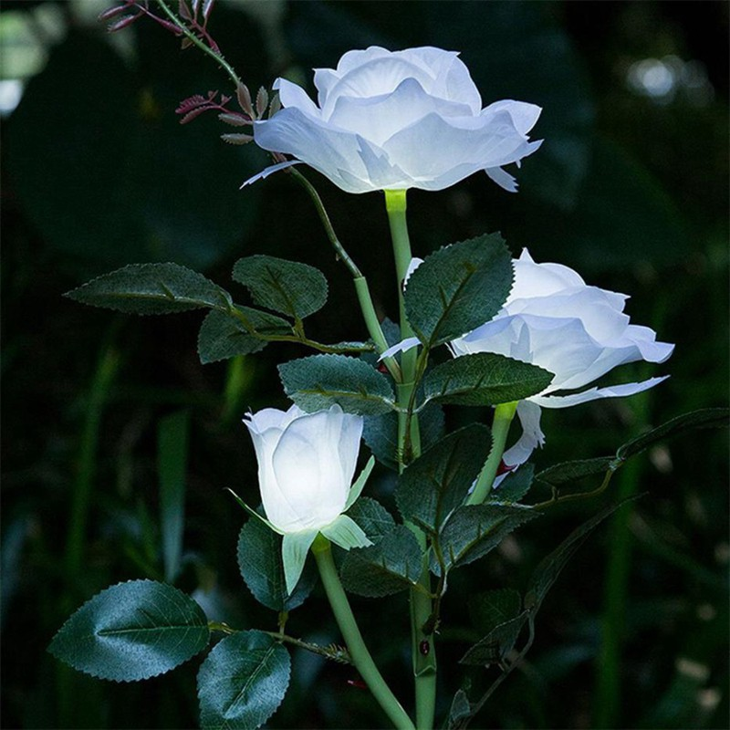 Lampu Taman 3 Kepala Bunga Mawar Putih Ip65 Tenaga Surya Shopee Indonesia
