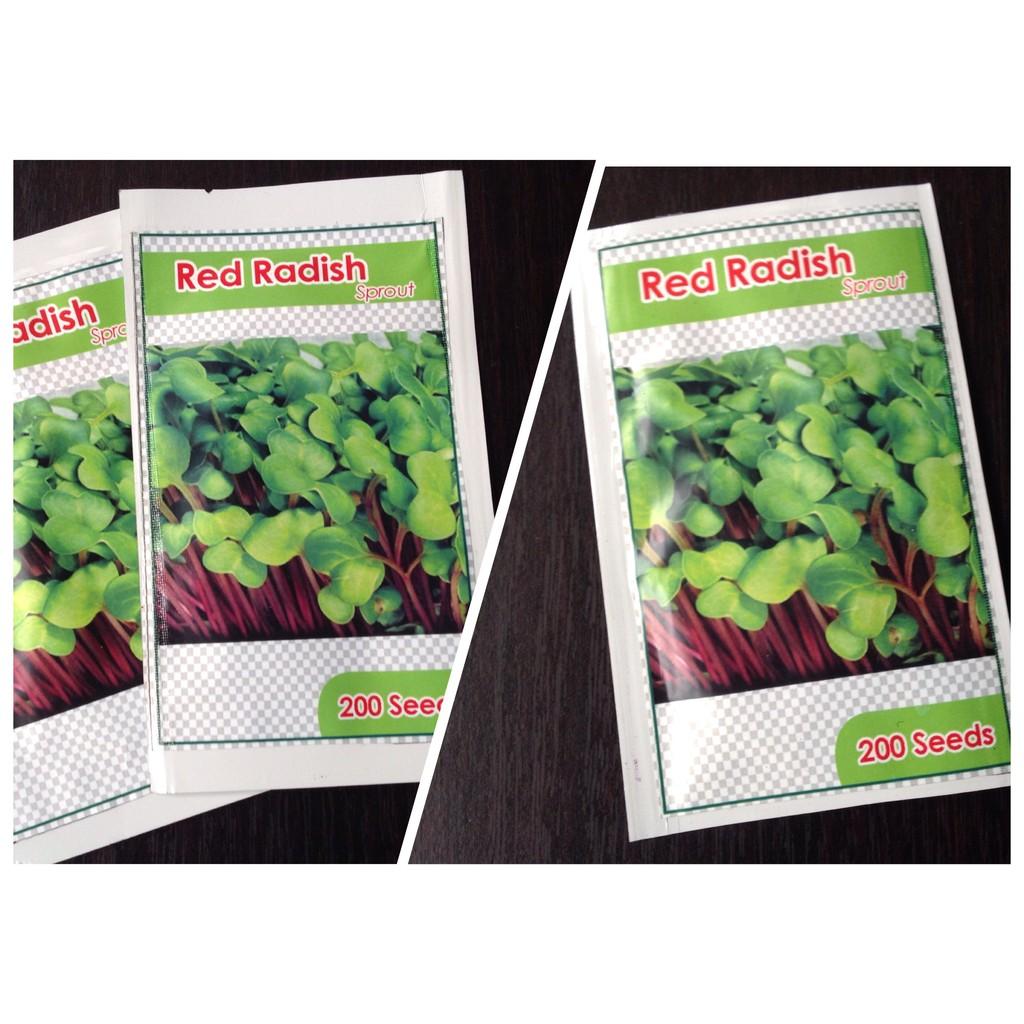 Benih Selada Red Top Shopee Indonesia Bibit Kale Russian Haira Seed
