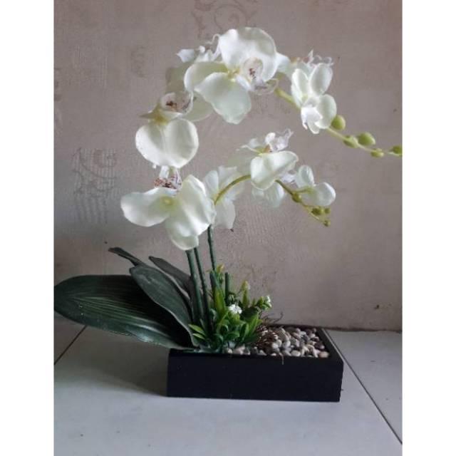 Bunga Anggrek Bulan Kain Putih Shopee Indonesia