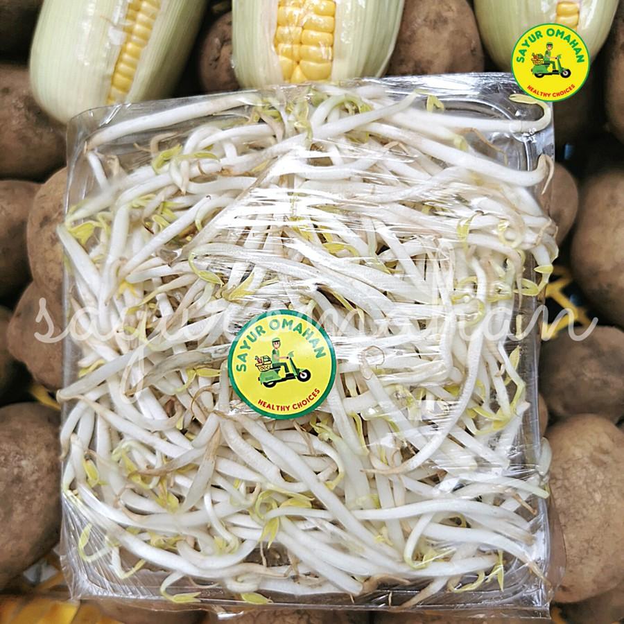 Sayuran Tauge Kecambah Toge Shopee Indonesia