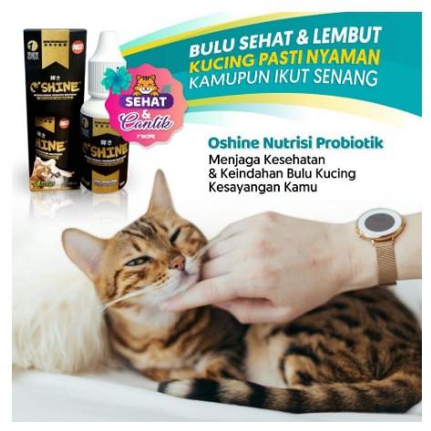Oshine Herbal Probiotik Hewan Obat Bulu Kucing Ampuh Anti Rontok Dan Kutu Super Manjur Shopee Indonesia