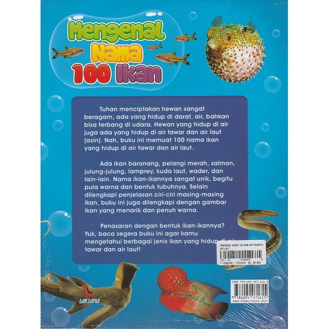 Mengenal Nama 100 Ikan Air Tawar Dan Air Laut Shopee Indonesia