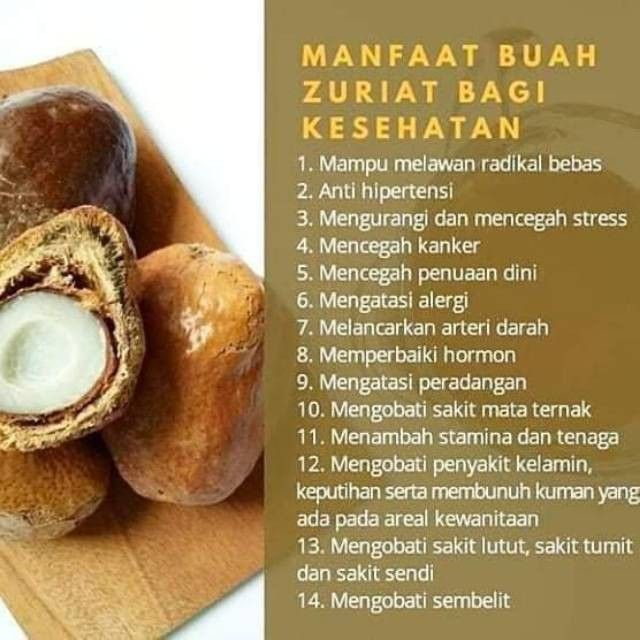Buah Zuriat Madinah Program Hamil Zuriyat Madinah Promil Wanita Pria 500gr 1kg Shopee Indonesia